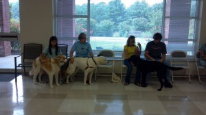 Therapets Obedience Class