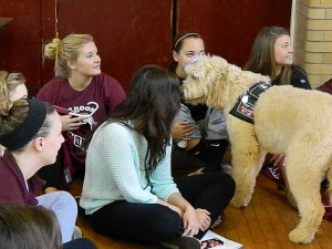 Daisy at Roanoke College Stressbuster